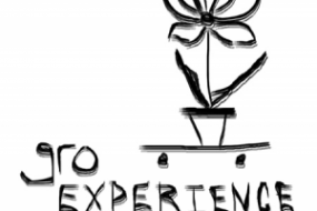 GRO Experience Coming Soon